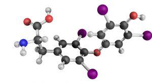 יוד - המינרל החשוב לגוף האדם
